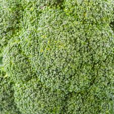Free Detail Shot Of Broccoli Royalty Free Stock Photography - 16672567