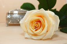 Free Jewelry Box With White Rose Stock Image - 16673231
