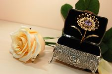 Free Jewelry Box With White Rose Stock Photography - 16673242
