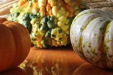 Free Gourd And Pumpkins Stock Photo - 16673930