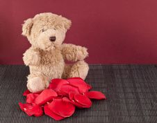 Free Brown Teddy Bear Royalty Free Stock Photography - 16674077