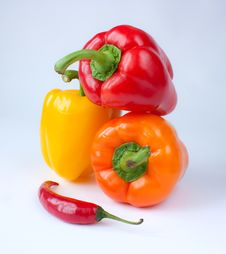 Free Capsicum. Sweet Peppers Stock Photos - 16674793