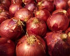 Free Red Onions Royalty Free Stock Photos - 16674908