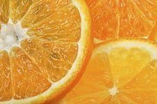Free Orange And Grapefruit Slices Stock Photography - 16676022