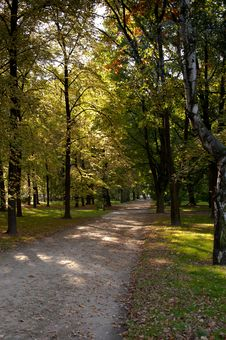 Free Park Saski In Autumn Stock Photography - 16676042