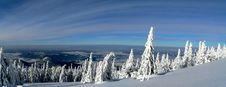 Free Winter Land Royalty Free Stock Photography - 16676317