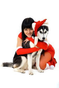 Free Dog Stock Photos - 16676433