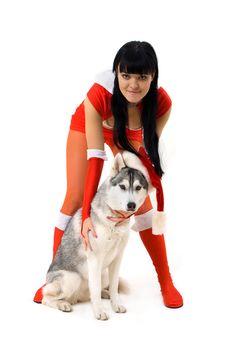 Free Dog Royalty Free Stock Image - 16676446