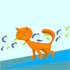 Free Kitten Royalty Free Stock Image - 16676576
