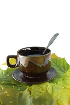 Free Still-life From A Cup Of Tea And Yellow Autumn Lea Stock Photos - 16677313