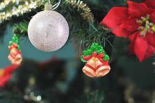 Free Christmas Tree Stock Photo - 16678920