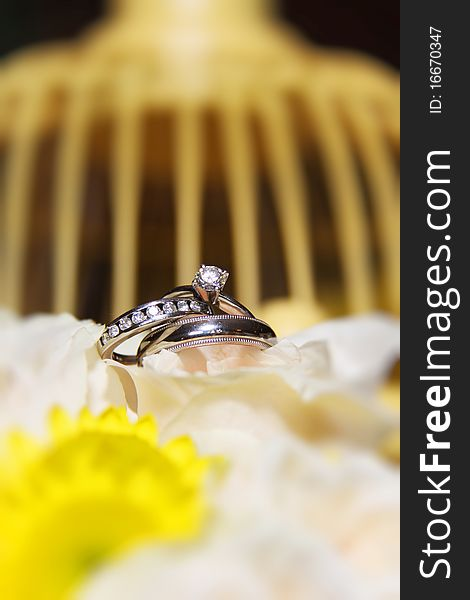 Wedding rings on flowers with bird cage