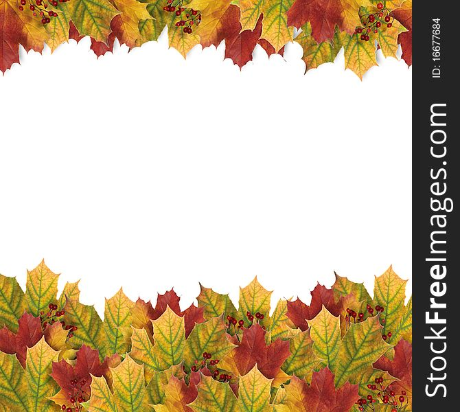Autumn card with autumn leaves