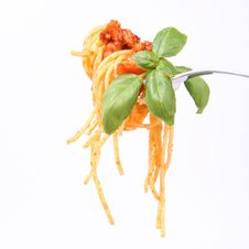 Free Spaghetti Bolognese On A Fork Royalty Free Stock Photo - 16683275