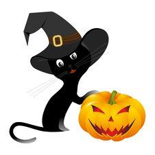 Free Halloween Kitten Royalty Free Stock Images - 16685799