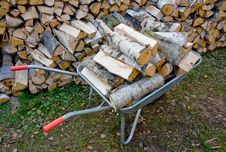 Free Wheelbarrow With Birch Firewood Stock Images - 16686454