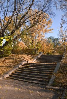 Stairs In A Park Royalty Free Stock Photo