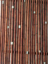Free Bamboo Stock Photo - 16694960