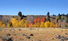 Free Autumn Landscape Stock Photos - 16695273