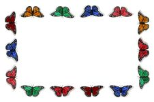 Free Butterfly Frame Stock Images - 16695684