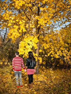 Free Love And Gold Autumn Royalty Free Stock Images - 16698769