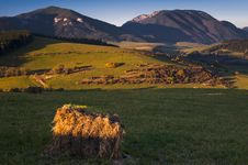 Free Hay Package Royalty Free Stock Photo - 16699055