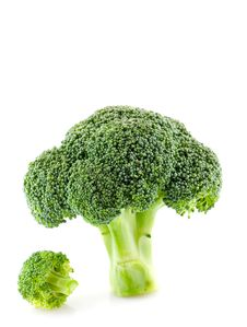 Free Broccoli Stock Image - 16699591