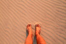 Free Feet On Beach Stock Images - 16699854