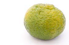 Free Green Mandarin Stock Photo - 16699900