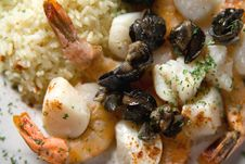 Free Steak, Shrimps And Rice Stock Photography - 1670212