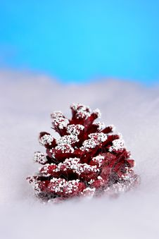 Free Christmas Pinecone Royalty Free Stock Image - 1671876