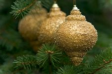 Free Macro Picture Of Three Golden Bulbs Stock Photography - 1673812