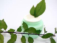 Free Cream Royalty Free Stock Photo - 1673915