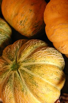 Free Hold Melon Stock Photo - 1674330