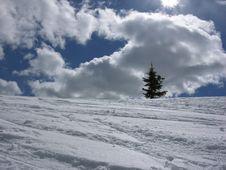 Free Winter  Landscape Royalty Free Stock Photo - 1674635