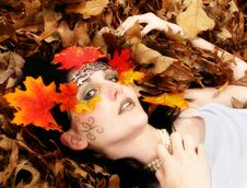 Free Fall Beauty Stock Photos - 1677843