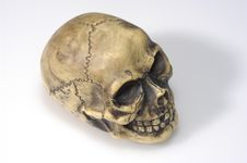 Free Skull Totenkopf Royalty Free Stock Images - 1678779