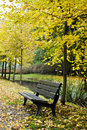 Free Bench In Autumn Forest Stock Images - 16708864