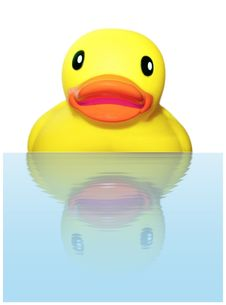 Free Surprised Rubber Ducky Royalty Free Stock Photo - 16700575