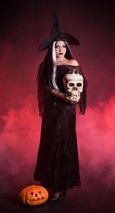 Free Halloween Witch With A Skull And Pumpkin Stock Photo - 16702050