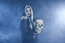 Free Halloween Witch With A Skull Stock Image - 16702061
