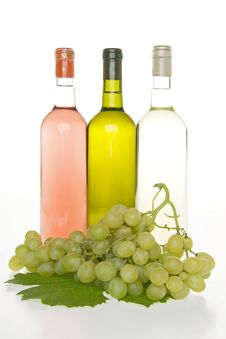 Free Wine And Grapes. Stock Photo - 16702250