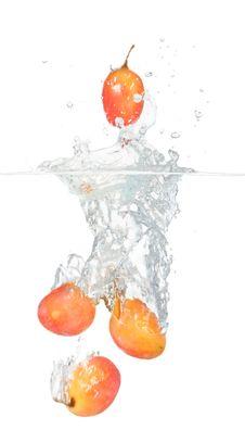 Free Grapes Stock Photos - 16703073