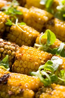 Grilled Yellow Corncobs Stock Photography