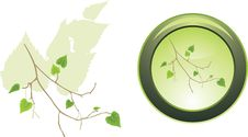Free Button With Sprig Of Birch Royalty Free Stock Photography - 16704797