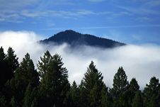 Free Trees, Mountains, And Clouds Royalty Free Stock Photos - 16707428