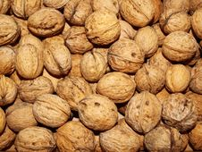 Free Walnuts Royalty Free Stock Images - 16708909