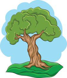 Free Tree Royalty Free Stock Photography - 16710567