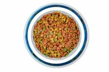 Free Pet Food In Bowl. Stock Photography - 16711132