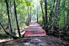Free Wooden Bridge Royalty Free Stock Photo - 16711375